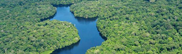 Nature Observatory of Amazonia (NOA) Sudamérica 2014