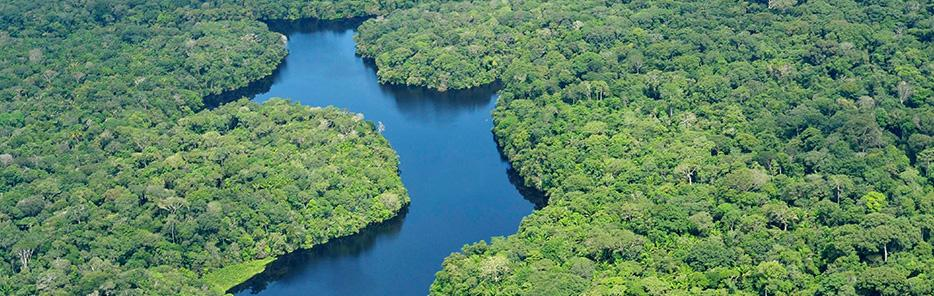 Nature Observatory of Amazonia