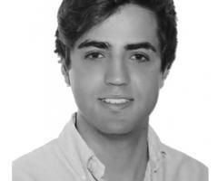 LUIS RUIZ ANDRES