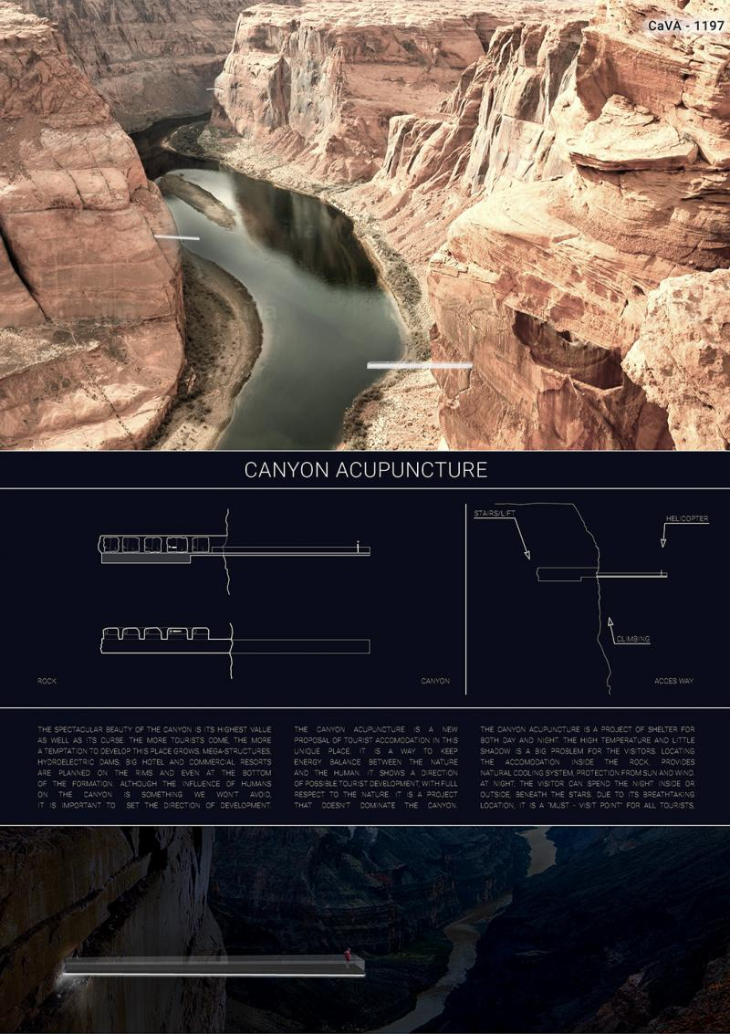 CaVA1197 - Canyon Acupuncture